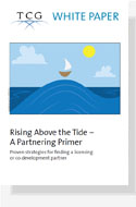 ENG wp Rising Above the Tide – A Partnering Primer